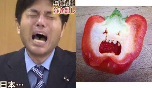 号泣議員・野々村竜太郎は2020年現在大阪で引きこもり生活!しくじりの根深い原因は重度のマザコンと毒親だった!